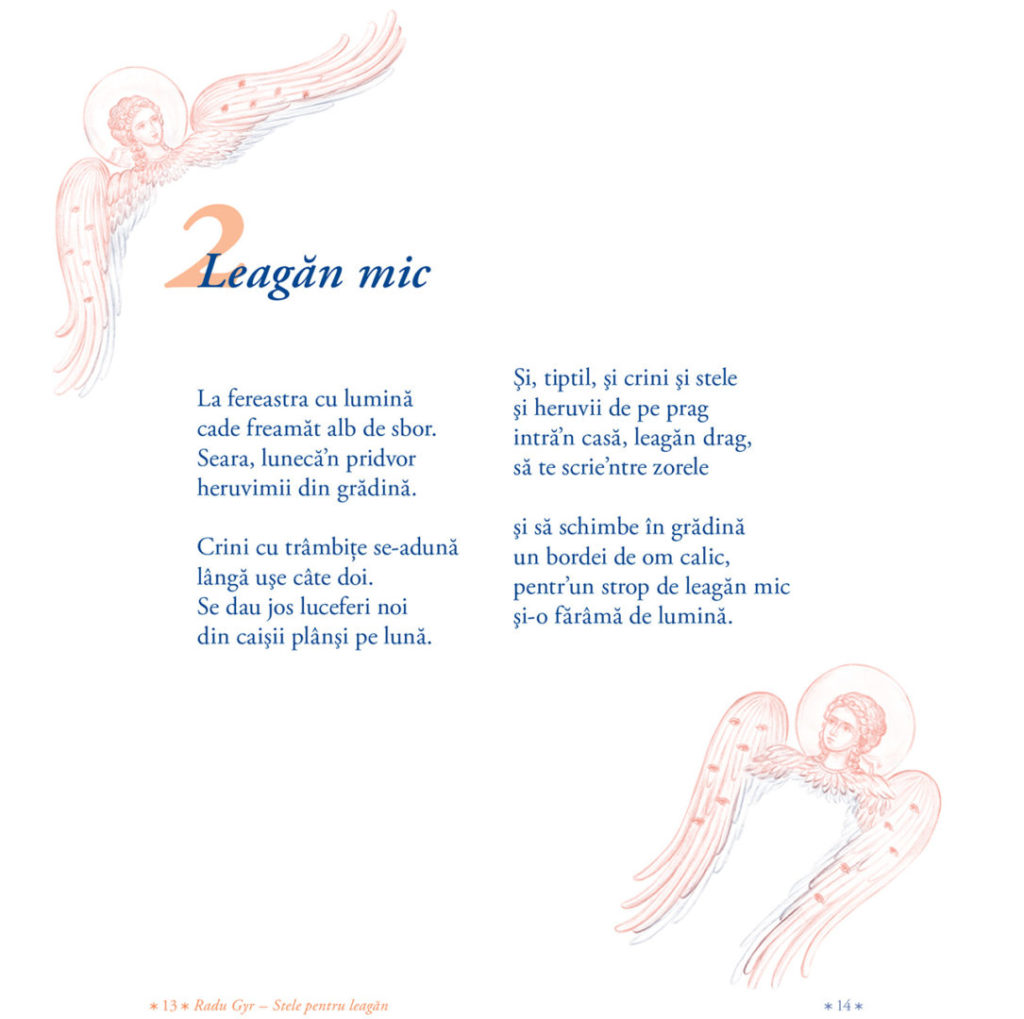 RADU GYR print-13